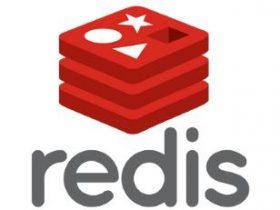 Redis 开启持久化缓存