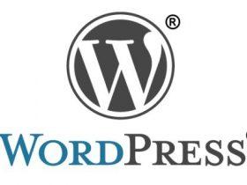 双十一特惠,WordPress课程三折起!